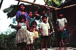 Famille Quichua
